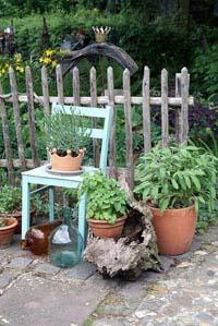 Gartenthema - die Krone