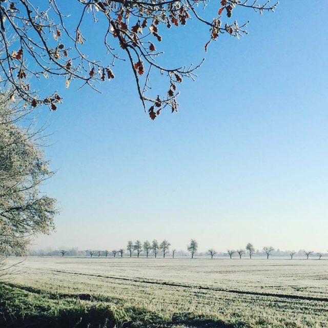 WestSibirien hh Brandenburg kalthier brandenburg frostfoto foodblogger