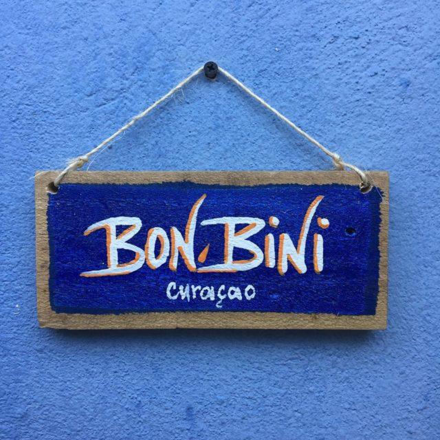 Diese Farben curacao strandurlaub karibik inswarme foodblogger caribbean homestay airbnblove
